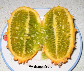 My dragon fruit