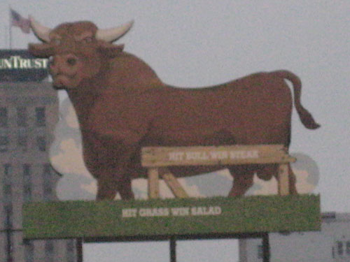 Go Durham Bulls