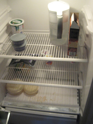 My fridge, desolate as Siberia