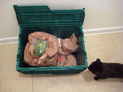Farm Fresh Delivery crate contents: Cat not included.