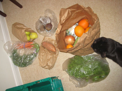 Vegetables and fruits! Cat not included.